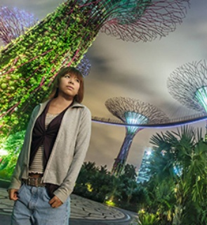 Singapore's Supertrees